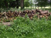 伦敦Gunnersbury公园英国风景公园 免版税库存图片
