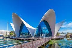 巴伦西亚-艺术和科学城市 免版税库存照片