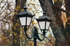 伪造的灯笼在公园 图库摄影