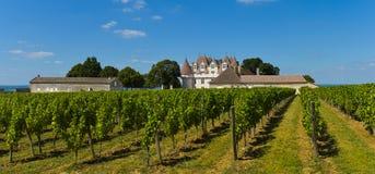 伯其拉多尔多涅省法国的城堡Montbazillac葡萄园 免版税库存照片