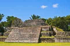 伯利兹玛雅人寺庙 免版税库存图片