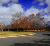 伯利・格里芬湖岸秋季风景  库存图片