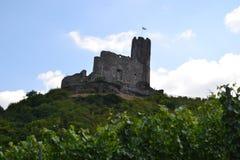伯尔尼城堡 图库摄影