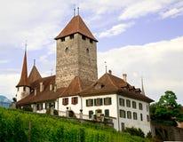 伯尔尼小行政区城堡spiez瑞士 库存图片