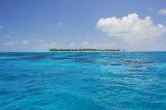 伯德岛,塞舌尔群岛 免版税图库摄影