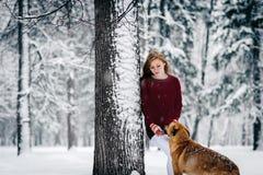 伯根地毛线衣和白色裤子的一个女孩站立倾斜反对树在积雪的森林中的红色狗附近 免版税库存图片