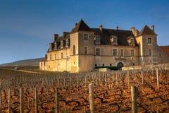 伯根地酒clos de法国vougeot 免版税库存图片