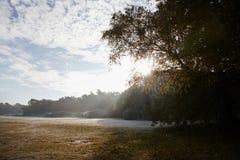 伯翰姆山毛榉,英国- 2016年11月7日:在伯翰姆山毛榉的冷淡的秋天风景在白金汉郡 库存图片