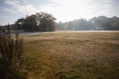 伯翰姆山毛榉,英国- 2016年11月7日:在伯翰姆山毛榉的冷淡的秋天风景在白金汉郡 库存照片