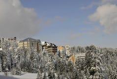 伯萨加盖了山雪 库存照片
