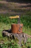 伸出树桩的轴 免版税库存照片
