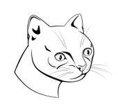 似猫的头,黑白破折号图画 免版税库存图片