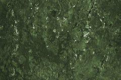 类似青苔、地衣、一张地形图或者风景的抽象深绿石表面 免版税库存图片