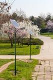 位于公园的公开照明设备生态系统 免版税库存照片