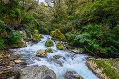 位于峡湾国家公园的湖玛丽亚秋天, Milford Sound,新西兰 免版税库存图片