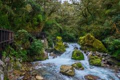 位于峡湾国家公园的湖玛丽亚秋天, Milford Sound,新西兰 库存图片