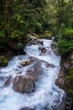 位于峡湾国家公园的湖玛丽亚秋天, Milford Sound,新西兰 免版税图库摄影