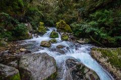 位于峡湾国家公园的湖玛丽亚秋天, Milford Sound,新西兰 库存照片