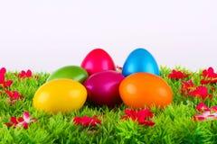 位于有花的一个草甸的五颜六色的被绘的复活节彩蛋 库存照片