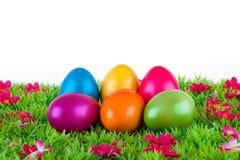 位于有花的一个草甸的五颜六色的被绘的复活节彩蛋 免版税库存照片