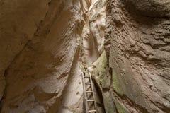 位于河的一个木楼梯陡峭的落矶山脉的脚在Goreme附近在土耳其 免版税库存照片