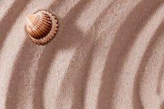 位于的沙子壳 免版税库存图片