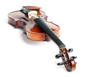 位于的脖子今后小提琴 免版税库存照片