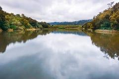 位于碧玉里奇生物蜜饯的Searsville湖在一阴天,旧金山湾区,加利福尼亚 图库摄影