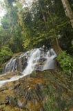 位于马来西亚的Kanching瀑布,令人惊讶的落下的热带瀑布 湿和生苔岩石,围拢由绿色雨林 免版税图库摄影