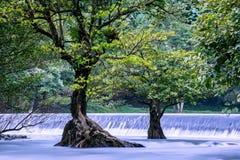 位于Nakhon Nayok的Wang Takrai瀑布泰国 因此射击采取与长的曝光光滑和蓬松水表面 库存图片