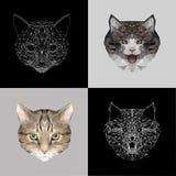 低传染媒介集合猫多设计 三角猫纹身花刺、着色、墙纸和打印的象例证在T恤杉 免版税图库摄影