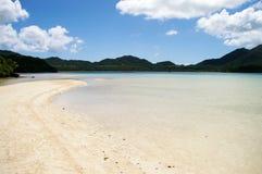 低入口自然热带 免版税图库摄影