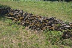 低墙壁由与生长的青苔的unmortared散石做成在他们 图库摄影