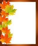 低多多角形秋天槭树离开照片框架问候 库存图片