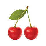 低多樱桃 库存图片