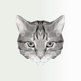 低多猫象的传染媒介例证 几何多角形猫剪影 纹身花刺的动物例证,上色 免版税库存照片