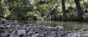 低河视图 免版税库存图片