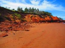 低潮中海边的峭壁 免版税库存照片