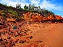 低潮中海边红色的峭壁 免版税图库摄影