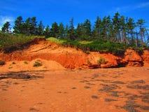 低潮中海边红色的峭壁 库存图片