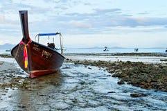 低潮中的安达曼海 库存照片