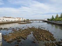 低潮中被暴露的岩石 免版税图库摄影