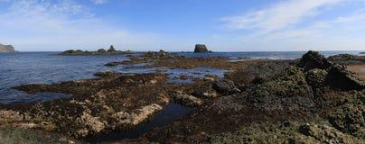 低潮区域在夏天低潮期间的在M海岛上  免版税图库摄影