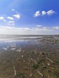 低潮在北海的瓦特 免版税库存图片