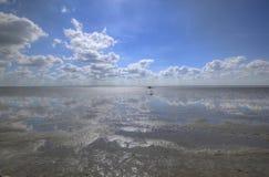 低潮在北海的瓦特 库存图片