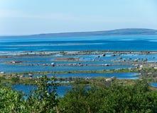 低潮在Varanger峡湾 库存照片