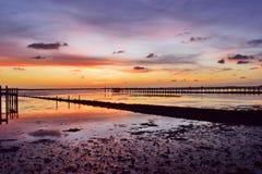 低潮日落墨西哥湾海岸,佛罗里达 免版税库存图片