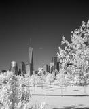 更低的曼哈顿的红外图象从自由公园的 免版税库存图片