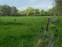 更低的莱茵河地区的典型的风景 库存图片