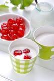 低脂肪酸奶用樱桃 库存图片
